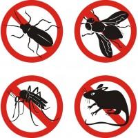 отрава от насекомых (2)